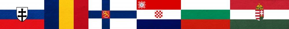Flaggenbild.png