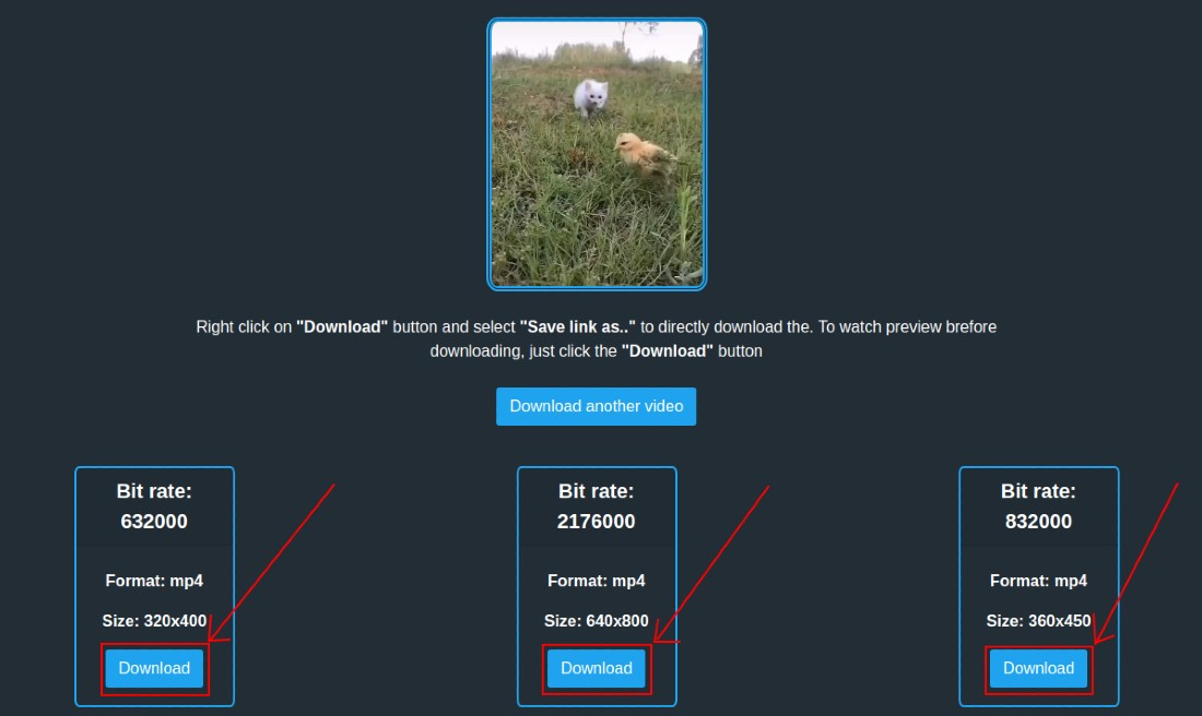 Select the desired option to download the twitter video or GIF