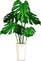 https://cdn.discordapp.com/attachments/460514889555771402/470188604170174475/plante.png