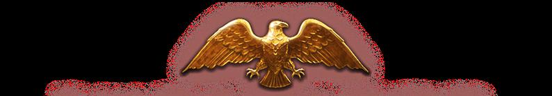 imperator-logo-9fc0ae57e119f436783fc37dd...55abf3.png