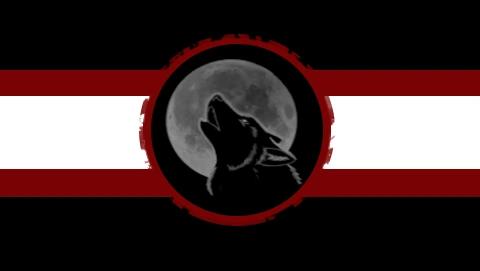 Flag_of_FTW.png