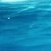 Fiches terminées - Page 2 Avatar_2