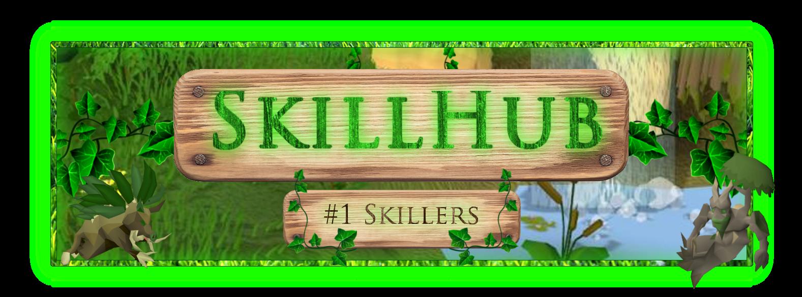SkillHub3.png