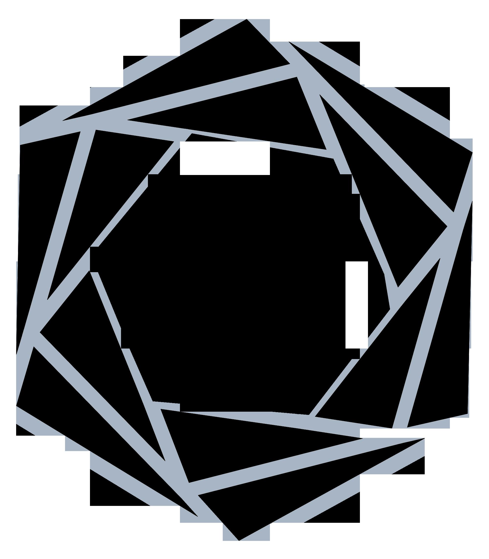 ndi-logo-black.png