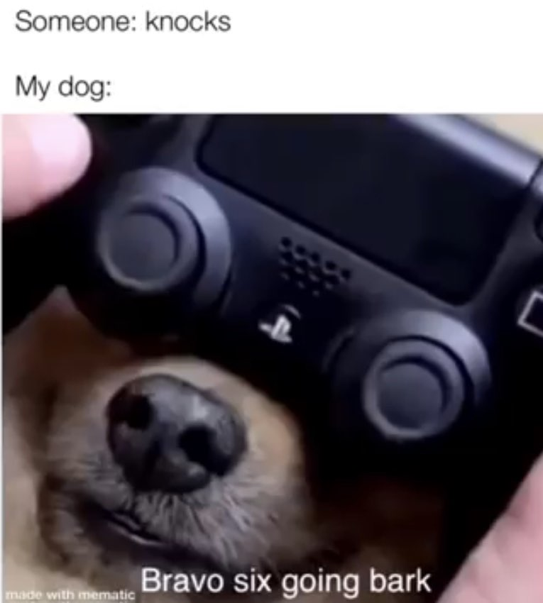 doggo_going_bark_mode.jpg
