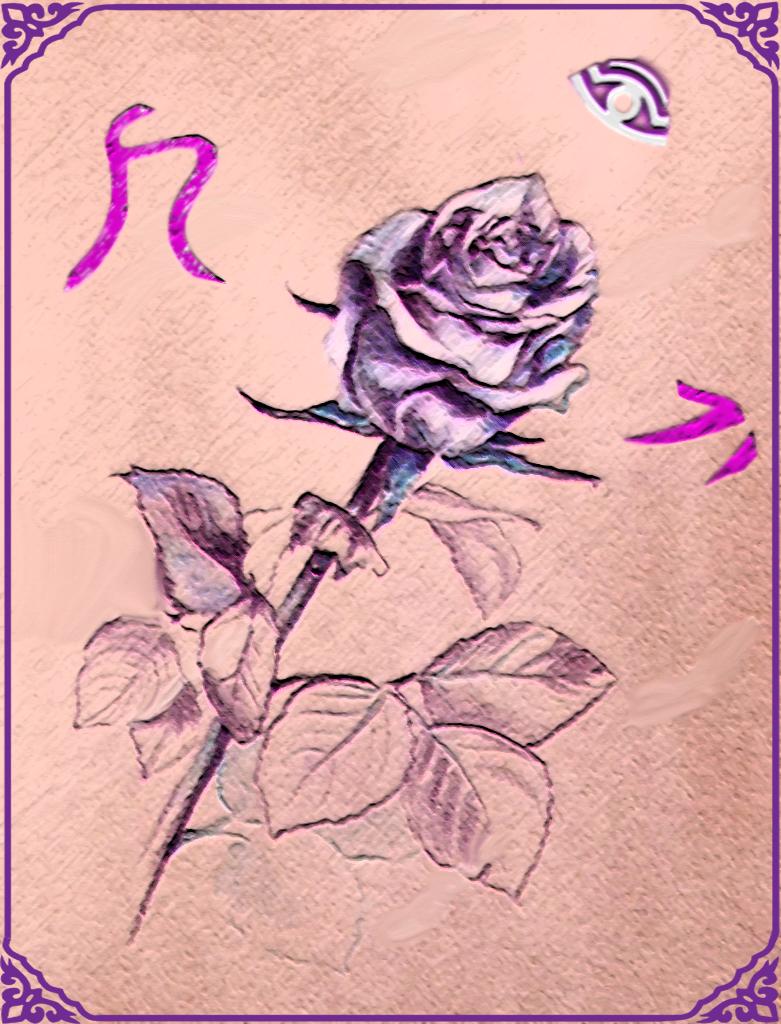 depositphotos_93217526-stock-photo-purple-rose-drawing.png