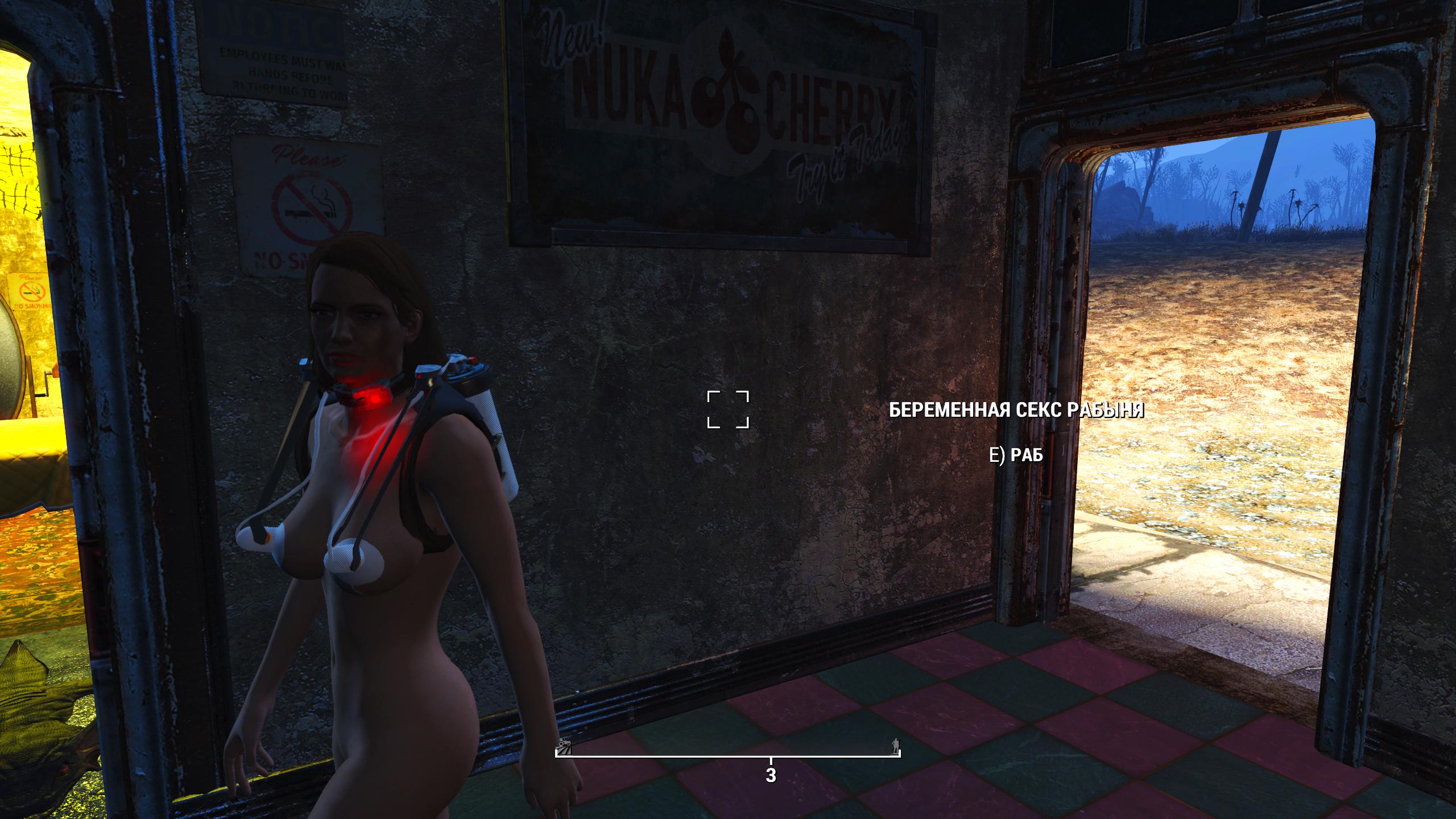 Fallout4_2021-01-17_20-00-21.jpg