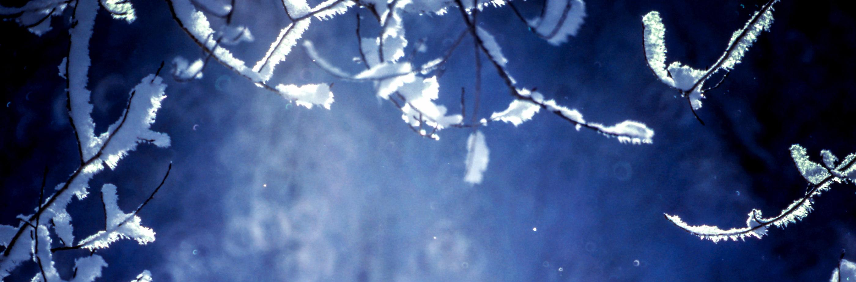 [Image: winter5.jpg]