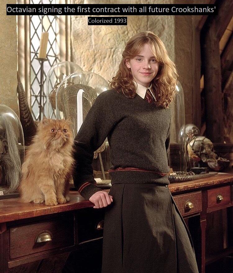 [Image: Hermione2.jpg]