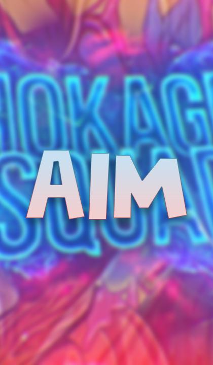 AIM HOKAGE
