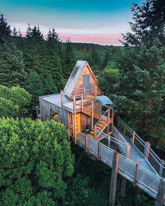 Domek na stromě Domek_v_lese