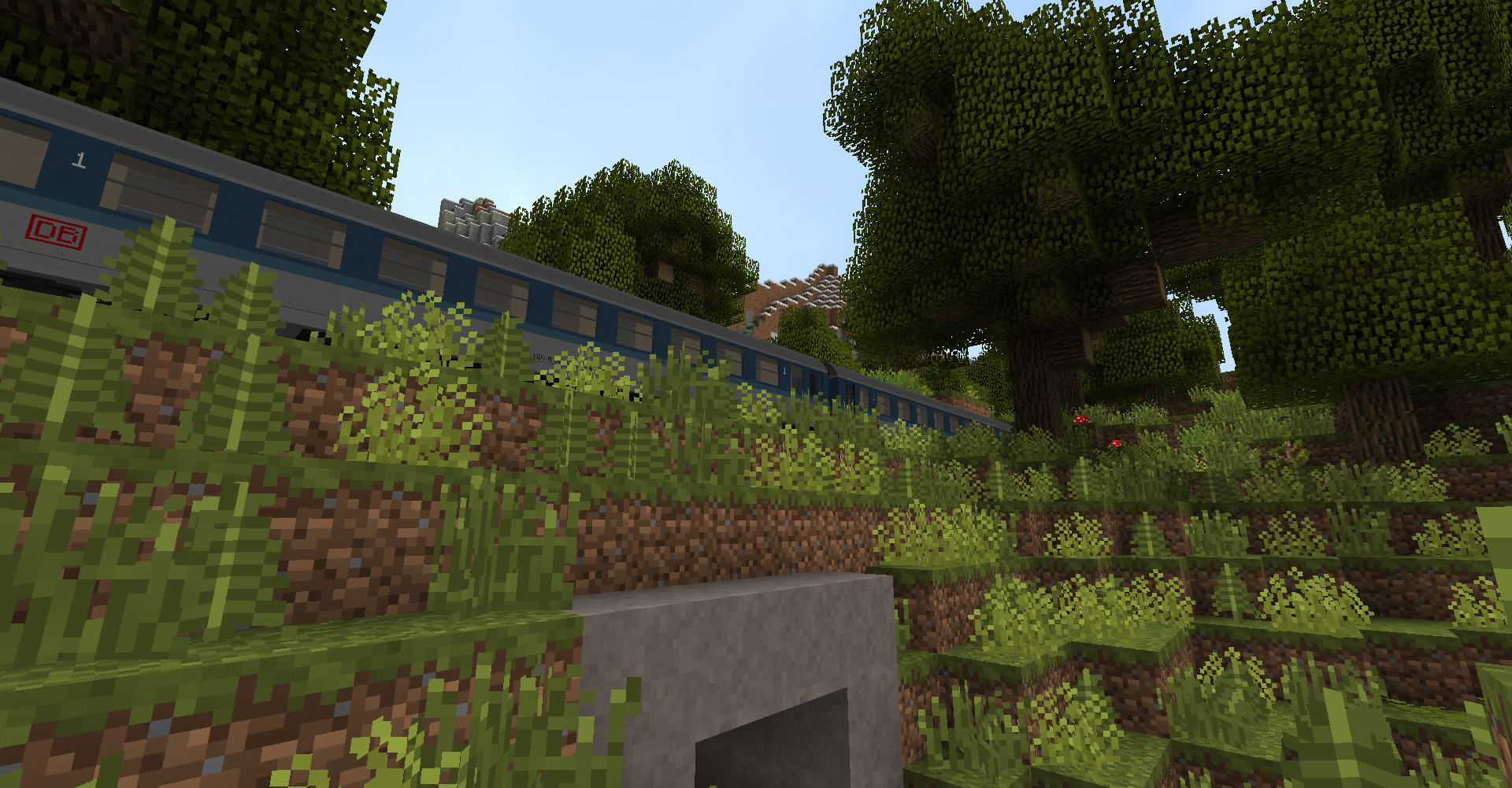 A regional train in the forest - Image by: 'Unit_FireFox'