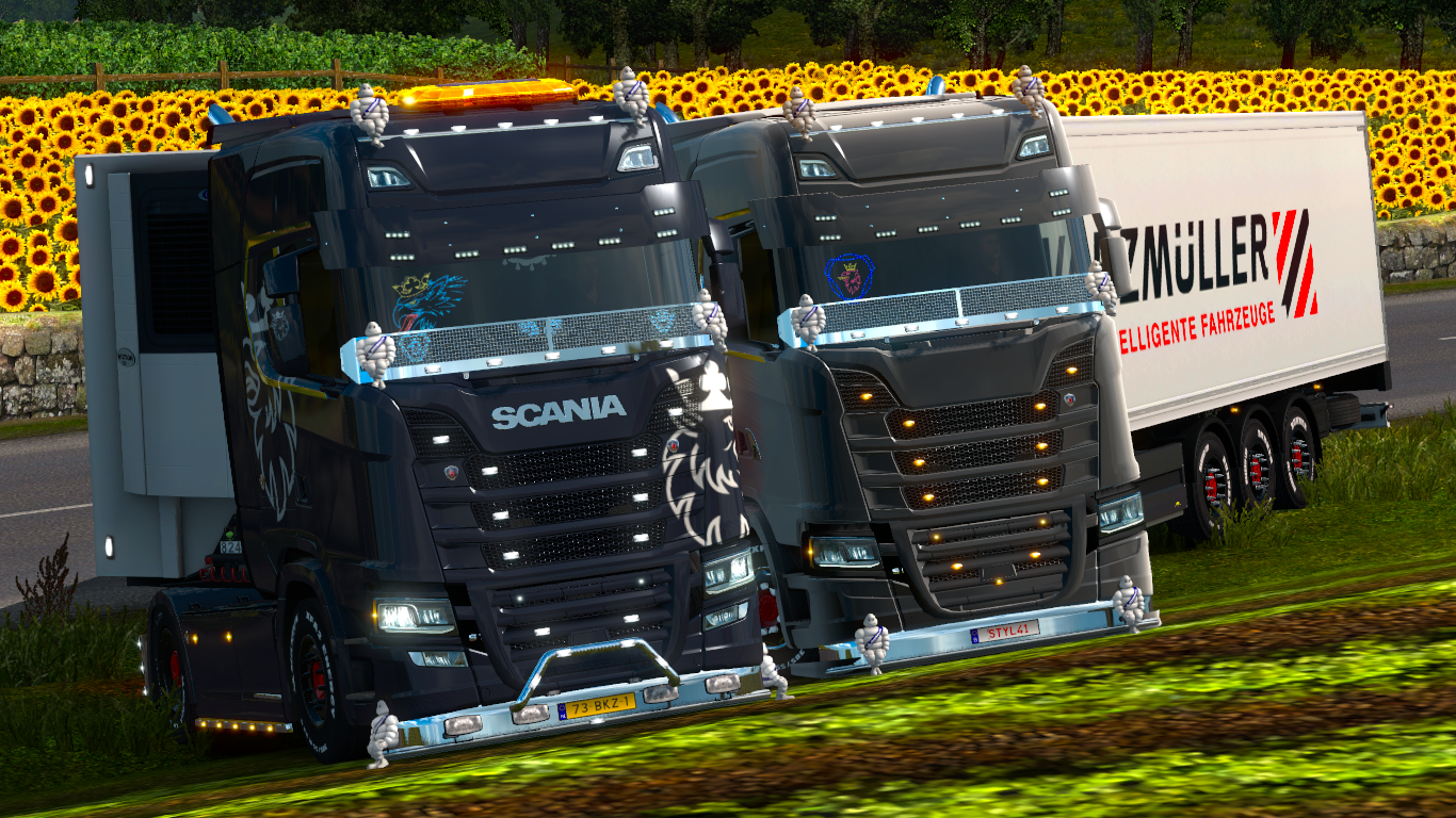 ets2_20190403_155142_00.png