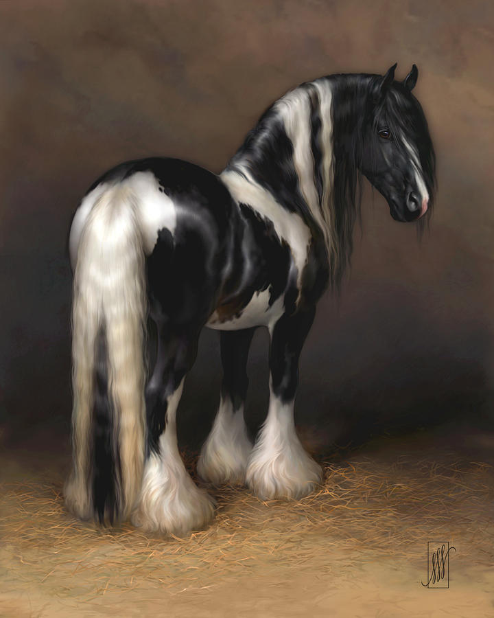 gypsy-cob-michelle-spalding.png