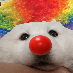 [Image: clown.png]