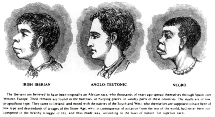 https://cdn.discordapp.com/attachments/526921073397071892/529283693458489364/Scientific_racism_irish.jpg