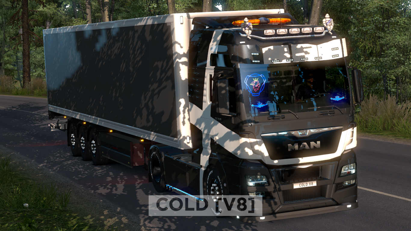 ets2_20190208_202224_00.png