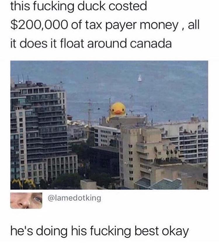 https://cdn.discordapp.com/attachments/532966360519802890/532976540380692487/Canada_taxpayer_money.jpg