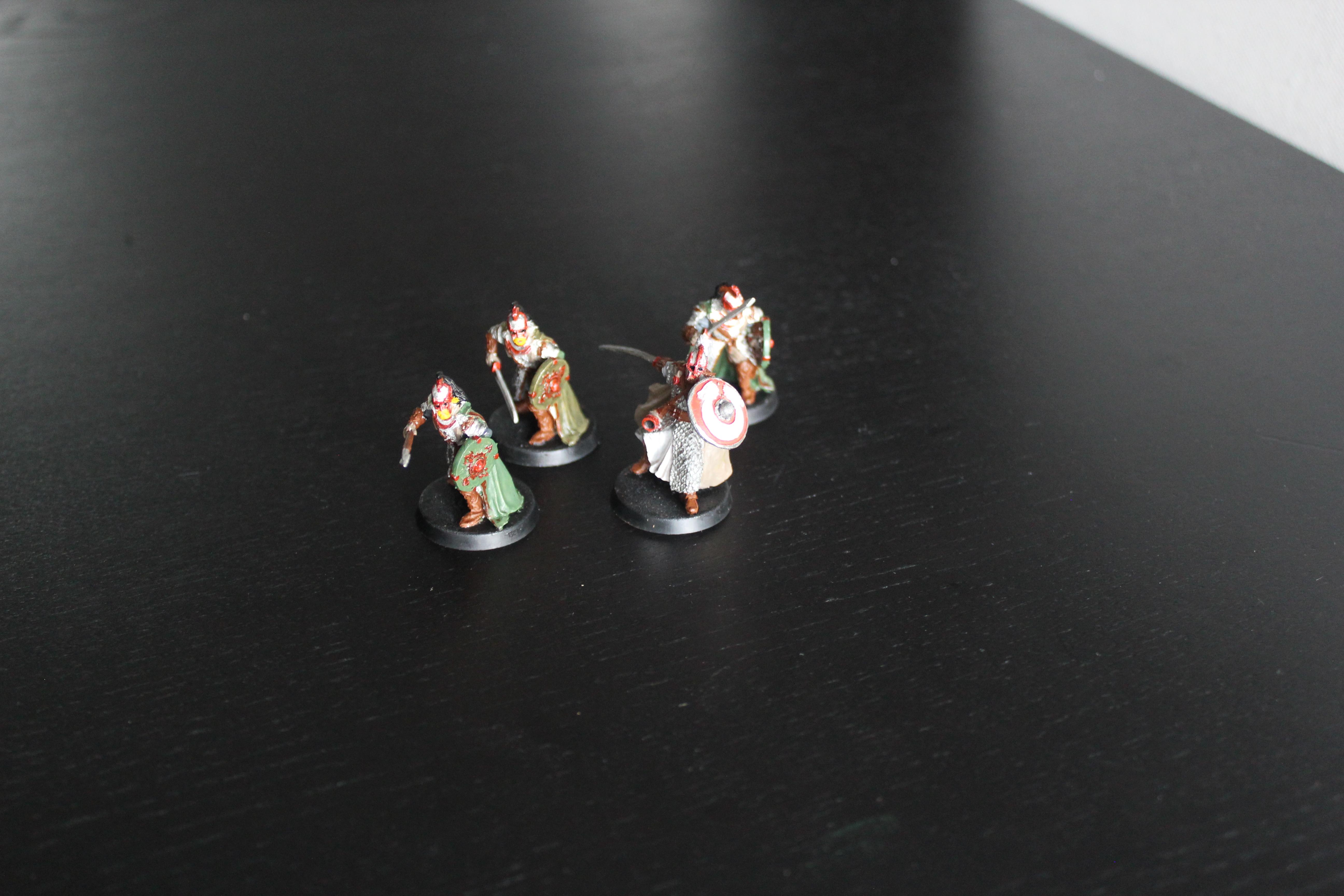 [Les combattants du Gouffre] Erkenbrand et Gardes Royaux IMG_9515