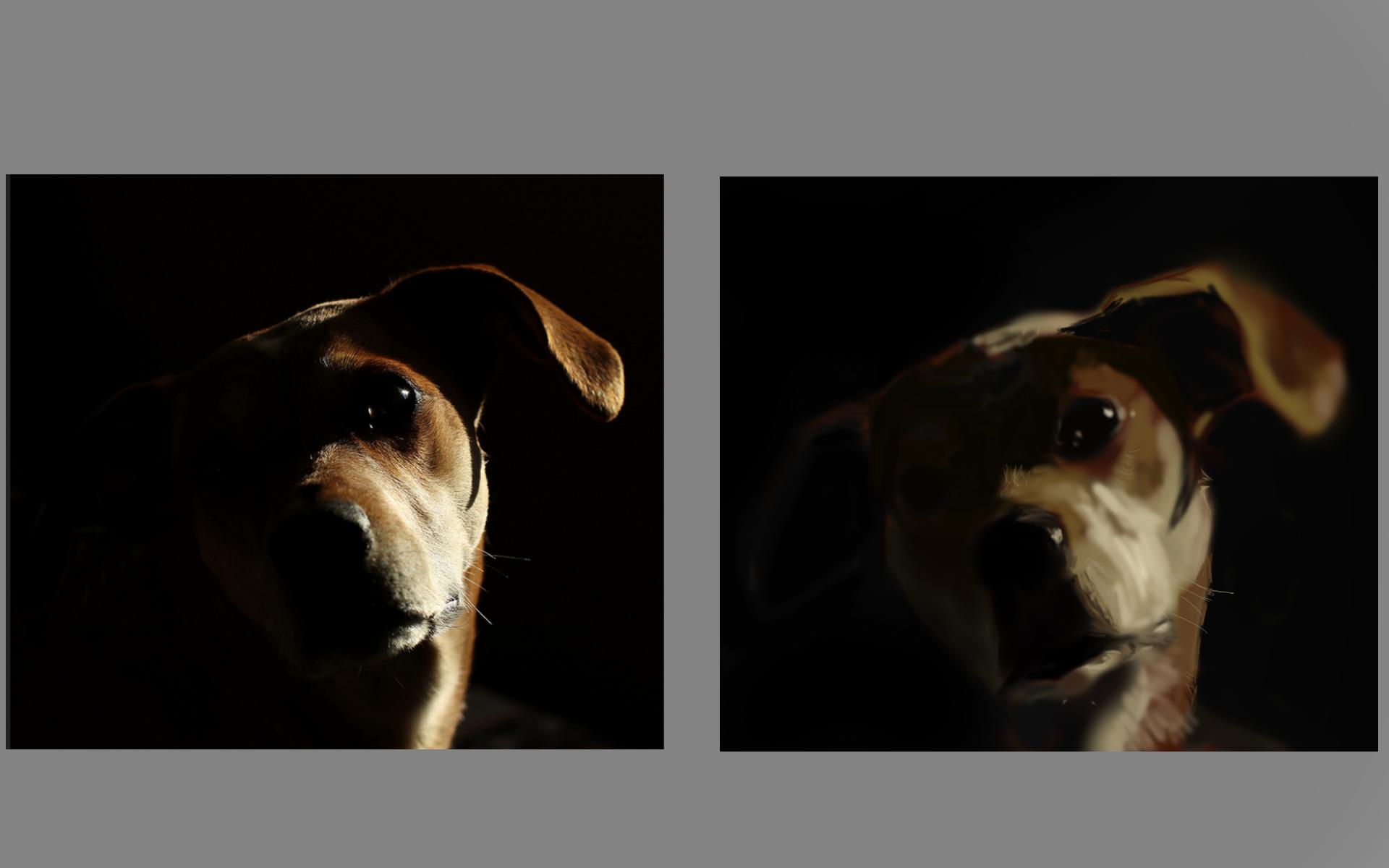 [Image: dog.png]