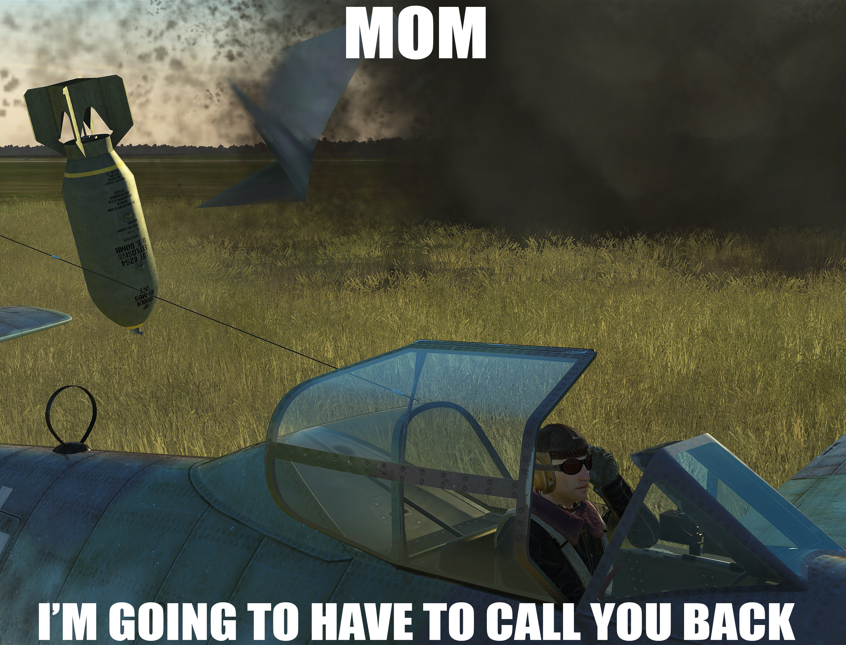 mom_call.png