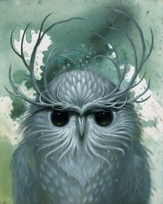 wisened_bird.jpg