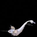 Ghost Grenadier / Granadero Fantasma [Contra Beedrill] [♫] Granadero_Fantasma_1