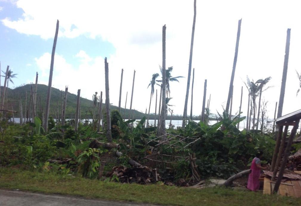 Screenshot_2021-09-13_at_21-13-54_iCyclone_HAIYAN_Wind_Damage_Images_zip.png