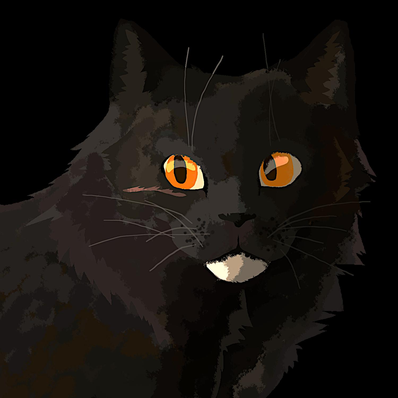 rhindon's cats Ravencom