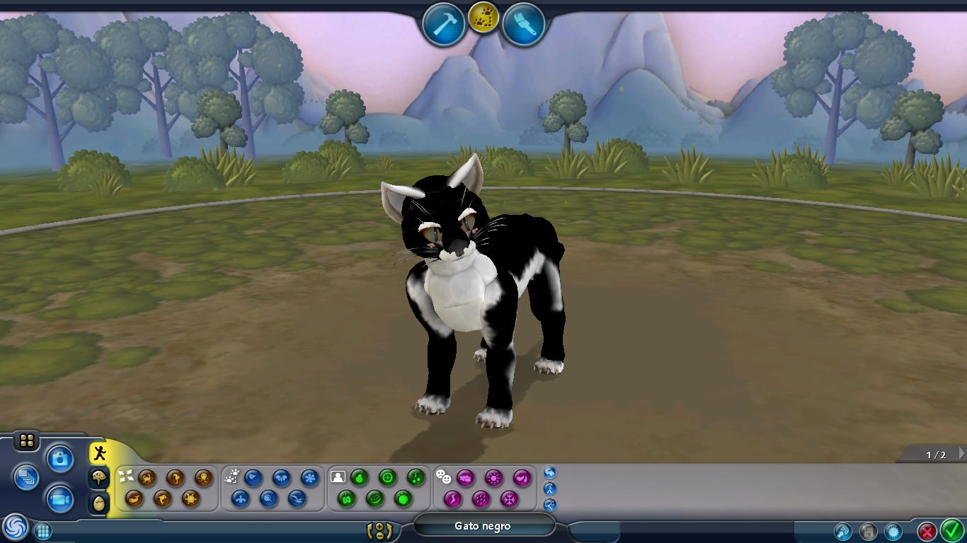 Gato negro Foto2
