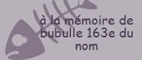 [ANIMATION] BUBULLE (163ème du nom) IS MISSING Bubulle_participant