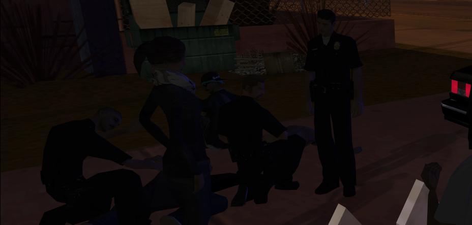 cops2.png