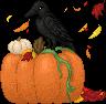 pumpkin_crow_small.png