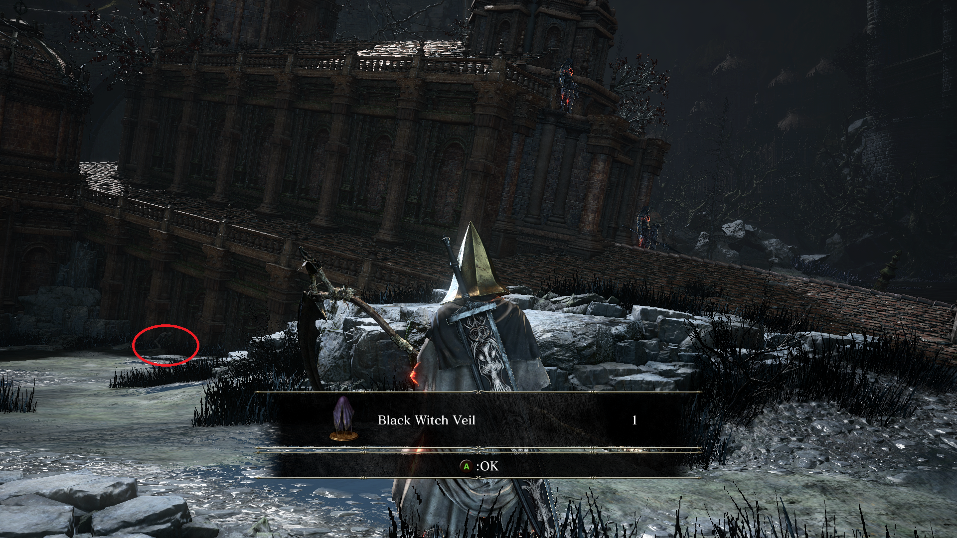 black_witch_veil.png