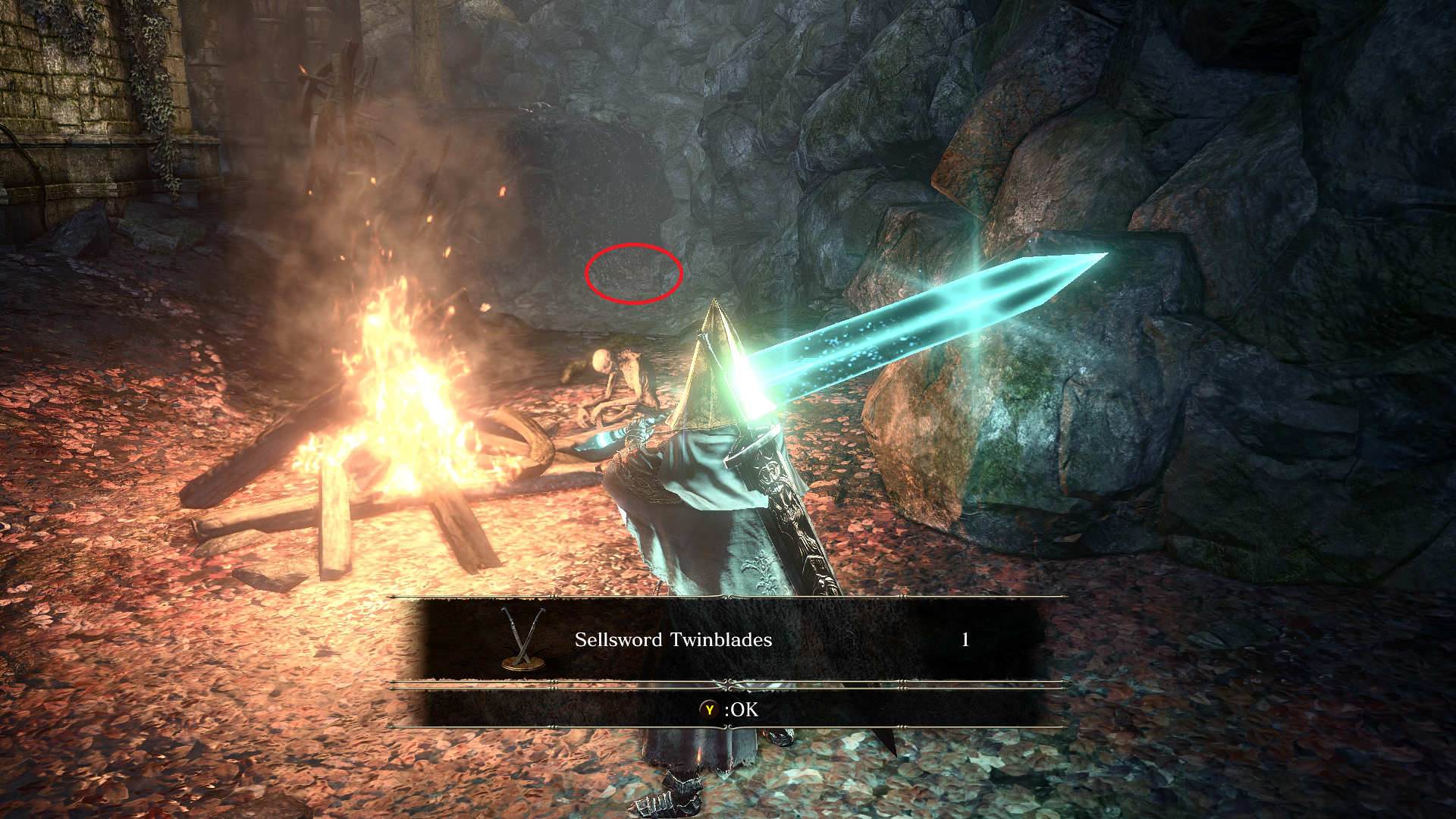 Sellsword_Twinblades.png