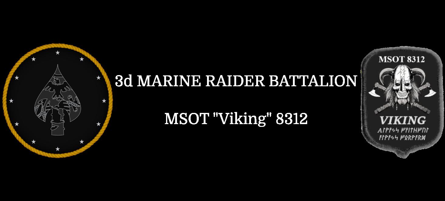 vIKING_2020_MK25-5_banner.png