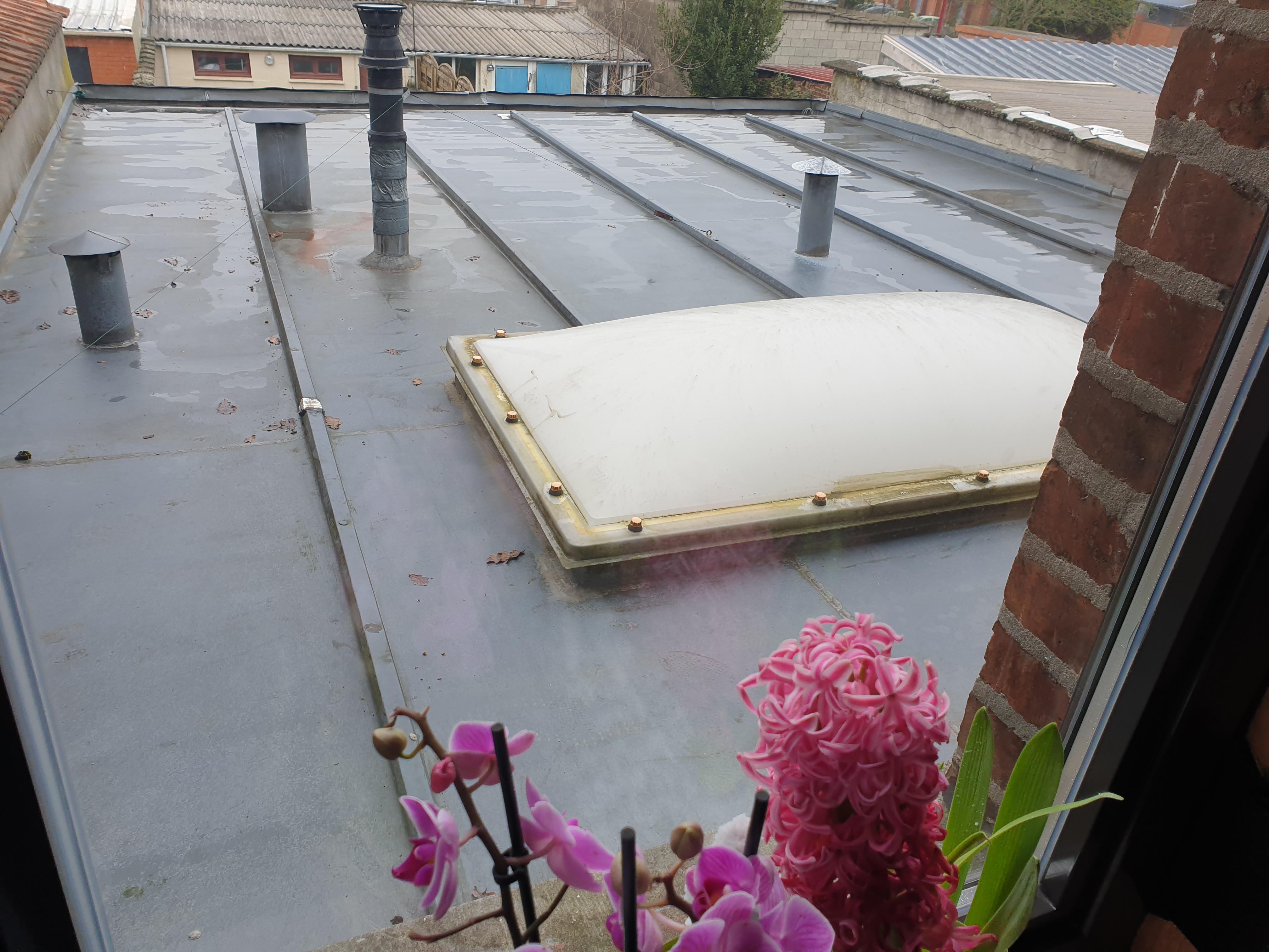 Forum : Réparation toiture zinc 30 ans 40m2