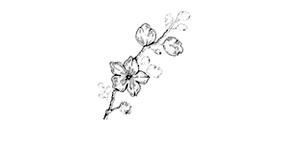 https://cdn.discordapp.com/attachments/648157188639948801/794989659729952788/2.png
