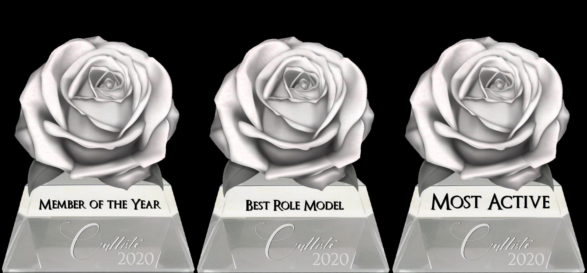 Callisto_Awards_2020.png