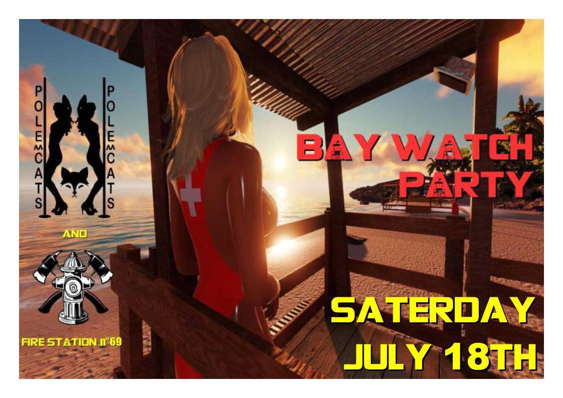 BAYWATCH_flyer.jpg