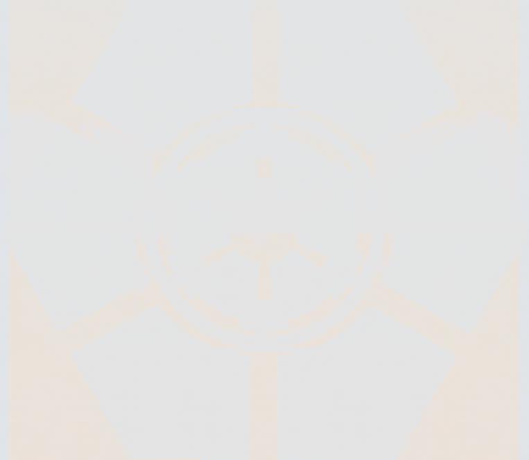 niosymbol111_1.png