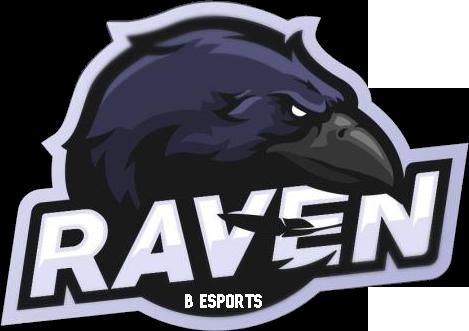 Raven Esport B