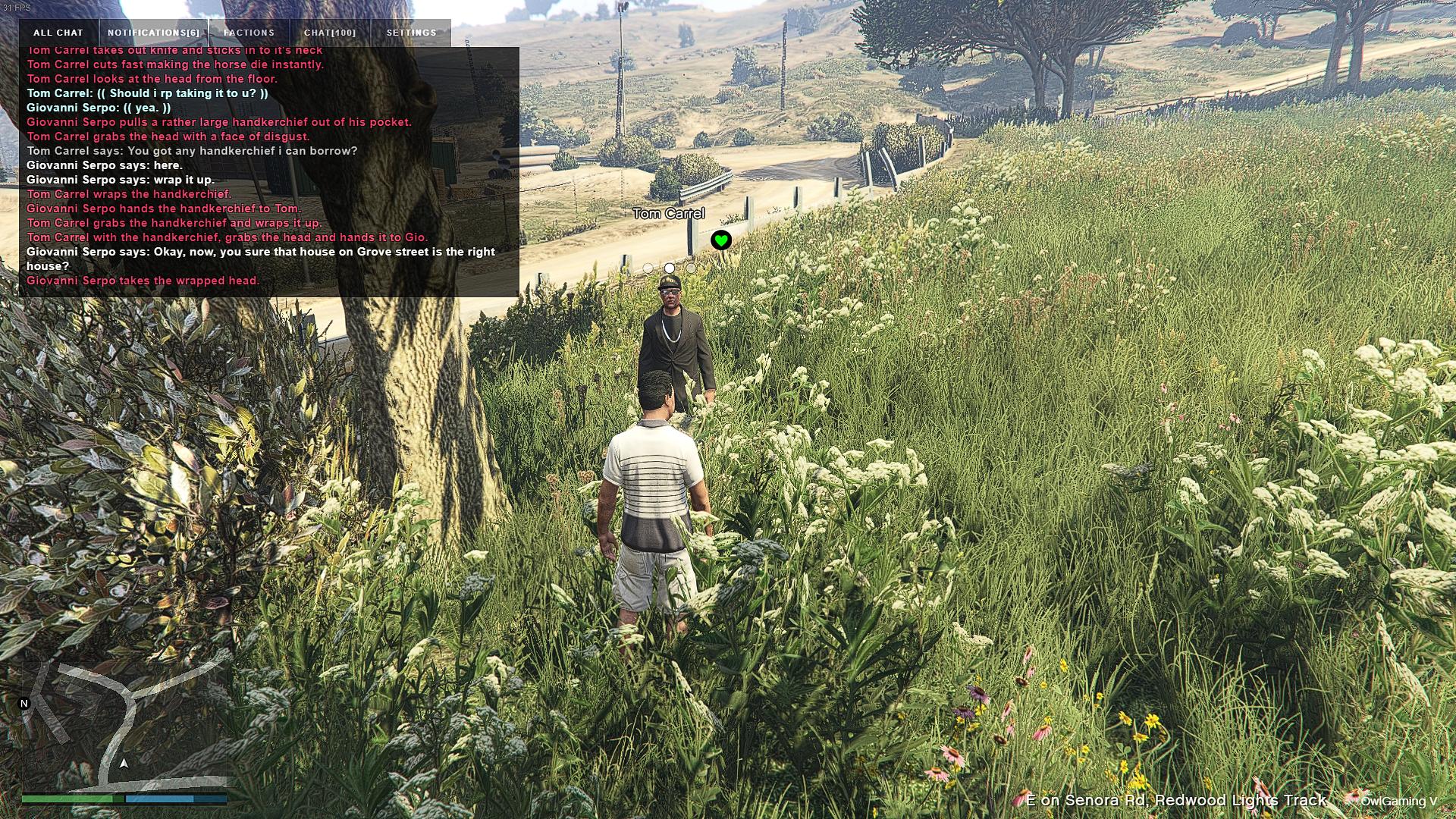 Grand_Theft_Auto_V_Screenshot_2020.05.04