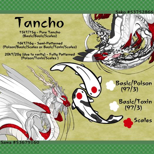 4_Tancho.png