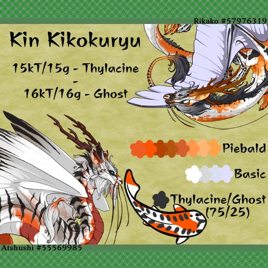 24_Kin_Kikokuryu.png