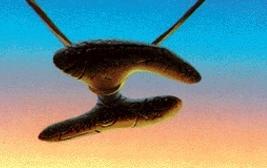 [793] La grande guerre des pommes de pin des sombres montagnes de Kanaan [PW Svetlana] - Page 2 Cor