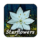 Starflowers-iconv1.png
