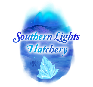 southern_lights_banner.png