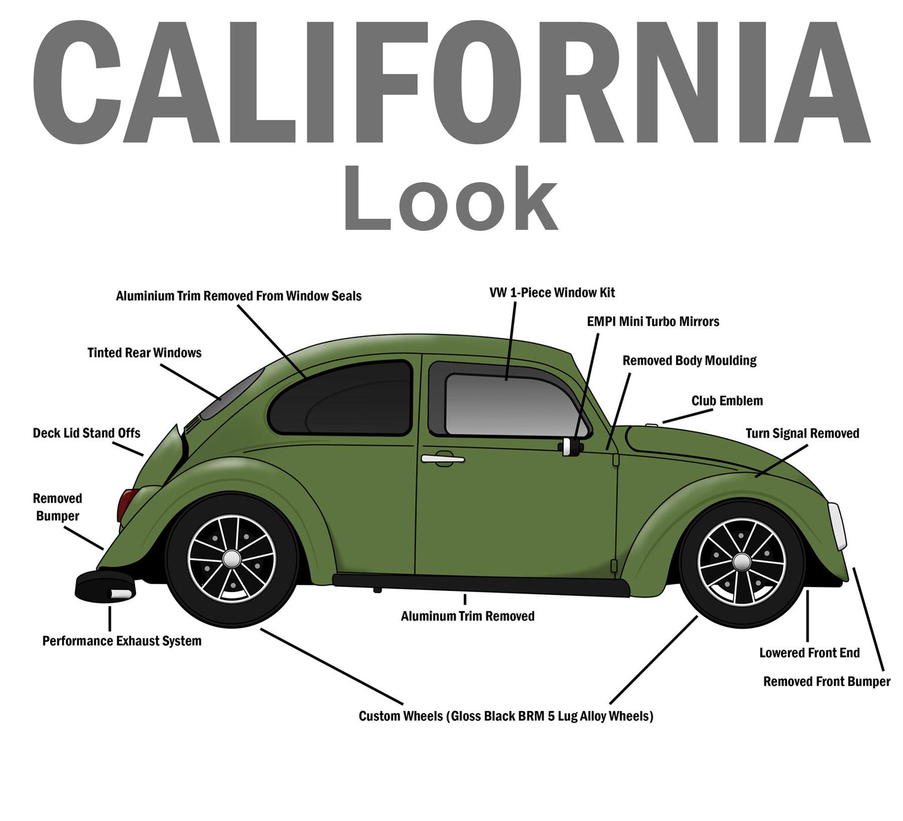 https://cdn.discordapp.com/attachments/742292124908781569/742292194056077362/California-Style-Beetle-1800px.jpg