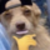 :dawg: